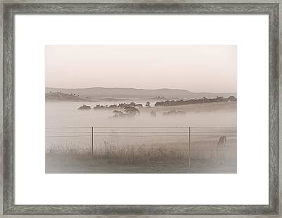Misty Morning In The Country 2 Framed Print