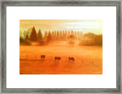 Misty Morning Framed Print by Ronald Haber