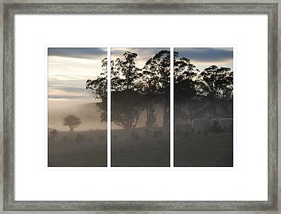 Misty Morning Triptych Framed Print