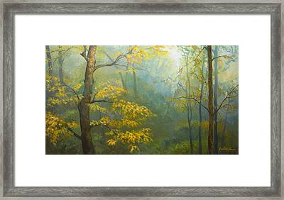 Misty Mountains Framed Print by Jonathan Howe