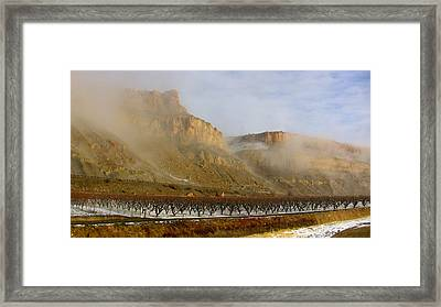 Misty Orchard Sunrise Framed Print
