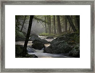 Misty Stream Framed Print