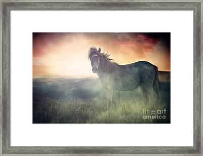 Misty Sunset Framed Print by Lee-Anne Rafferty-Evans