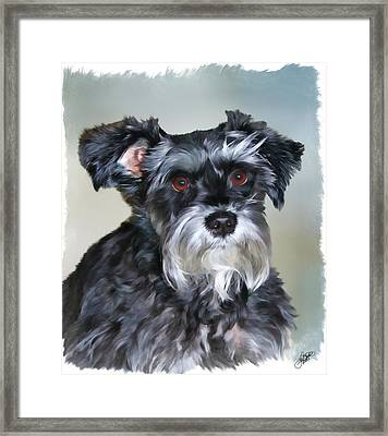 Mitzi Framed Print by Tom Schmidt