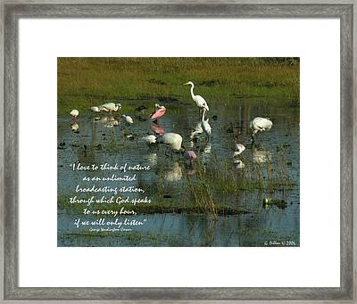 Mixed Flock In Oasis Framed Print by Grace Dillon
