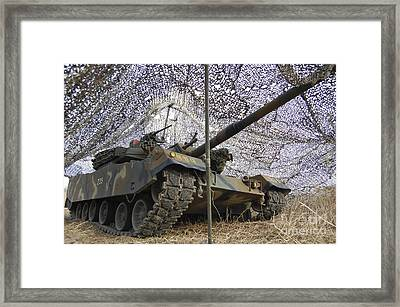 Mock Aggressors From Republic Of Korea Framed Print