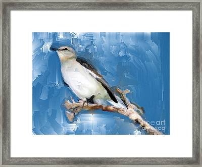 Mocking Bird In Blue Framed Print