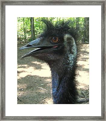 Mohawk Framed Print by Bruce Carpenter