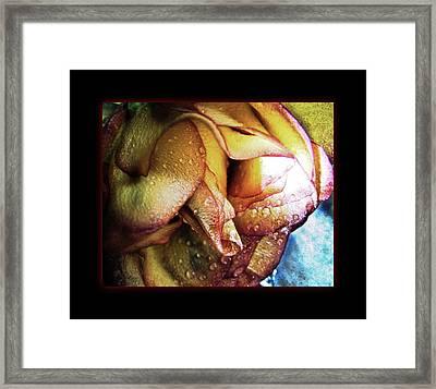 Moist Framed Print by Monroe Snook