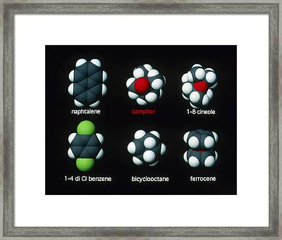 Molecules That Smell Like Camphor Framed Print by David Parker