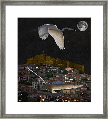 Molyvos Lesvos Egrets By Moonlight Framed Print by Eric Kempson