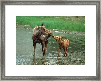 Framed Print featuring the photograph Mommy And Me by Doug Herr