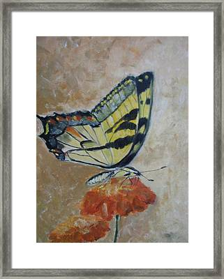 Monarch Framed Print by Iris Nazario Dziadul