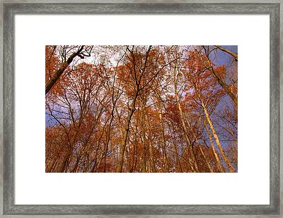 Monday Monday Framed Print by Ed Smith