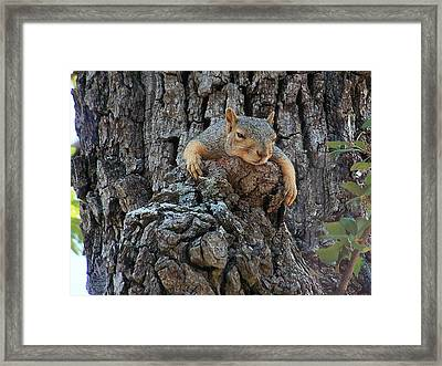 Monday Morning Framed Print