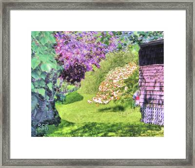 Monhegan Blooms Framed Print by Richard Stevens
