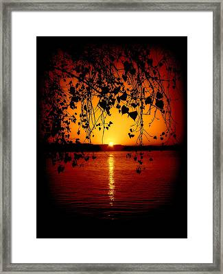 Monitor Bay Framed Print by Jennifer St Pierre