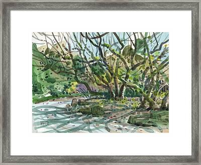 Monk Trees  Framed Print