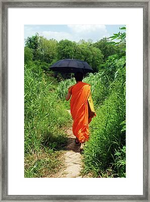 Monk Walking, Luang Prabang, Laos Framed Print by Thepurpledoor