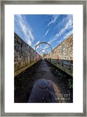 Monkey Bridge Framed Print by John Farnan