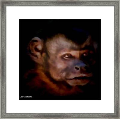 Monkey See Framed Print by Debra     Vatalaro