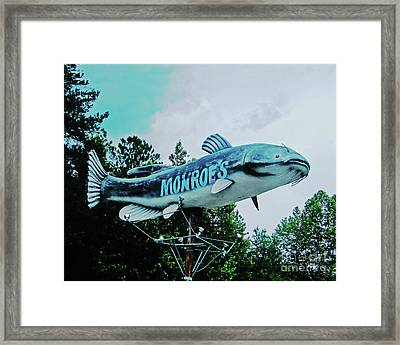 Monroe's Catfish  Framed Print by Lizi Beard-Ward