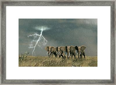 Monsoon On The Serengeti Framed Print by Walter Colvin