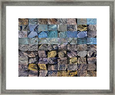 Montage Blue Beach Fossil Specimens Framed Print by William OBrien