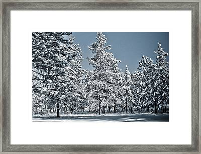 Framed Print featuring the photograph Montana Christmas by Janie Johnson