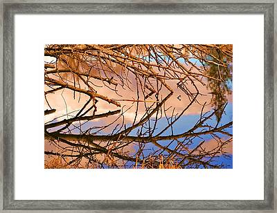 Montana Peace Pond IIi Framed Print by William Kelvie
