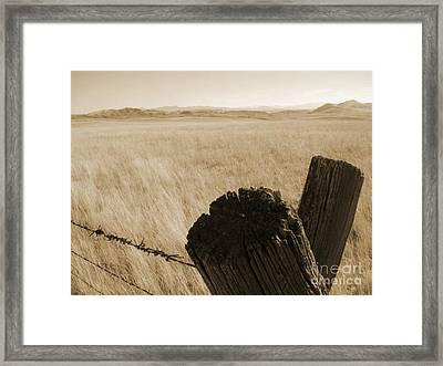 Montana Vista Framed Print
