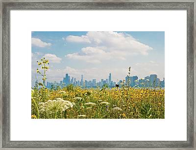 Montrose Harbor's Bird Sanctuary Framed Print