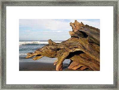 Monument At Playa Hermosa South Of Jaco Costa Rica Framed Print by Michelle Wiarda