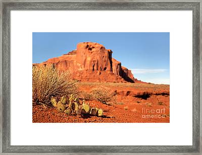 Monument Valley Cactus Framed Print by Jane Rix