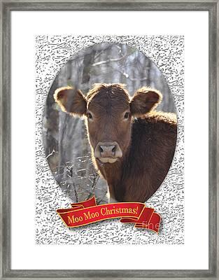 Moo Moo Christmas Framed Print by Cheryl McClure