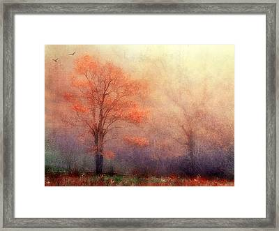 Moods Of Autumn Framed Print by Darren Fisher