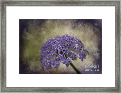 Moody Blue Framed Print by Clare Bambers