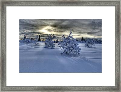 Framed Print featuring the photograph Moody Snow Scene by Michele Cornelius