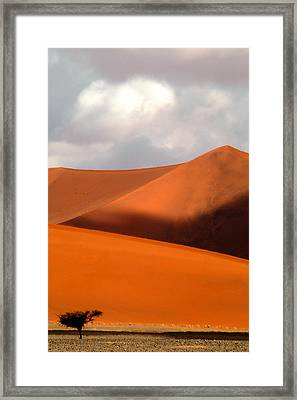 Moody Tree Upright Framed Print