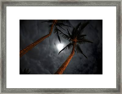 Moon And Palms Framed Print by George Crawford