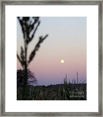 Framed Print featuring the photograph Moon by Andrea Anderegg