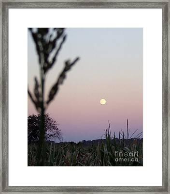 Moon Framed Print by Andrea Anderegg