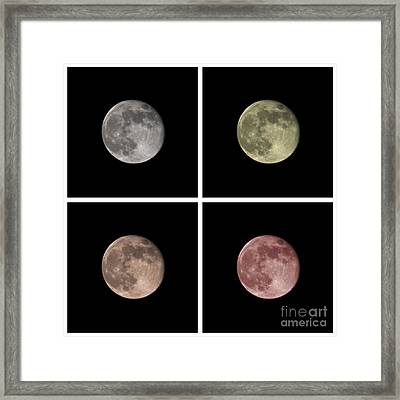 Moon Framed Print by Blink Images