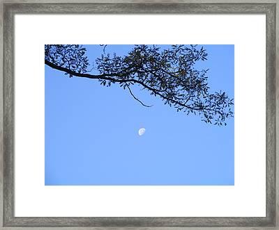Framed Print featuring the photograph Moon by Bogdan Floridana Oana