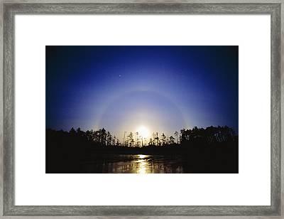 Moon Dog Framed Print by David Nunuk