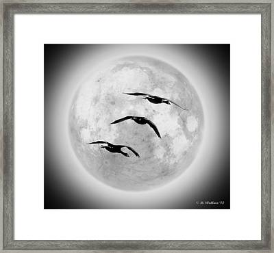 Moon Geese Framed Print by Brian Wallace
