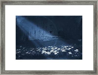 Moon Light Daisies Framed Print