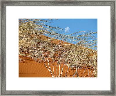 Moon Over Dune Framed Print