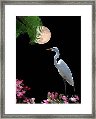 Moon Over Florida Framed Print by Betty LaRue