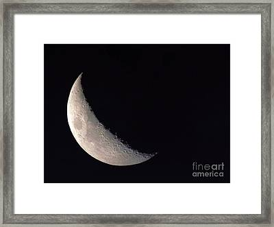 Moon Shadow Framed Print by Sue Stefanowicz